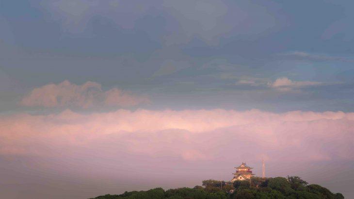 小牧山城の攻略・織田信長が初めて築いた石積みの城<発掘調査中>