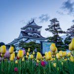 富山城の攻略・城主佐々成政、前田利長から戦国を感じたい